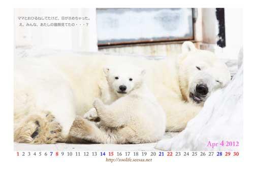 2012こぐまカレンダー中