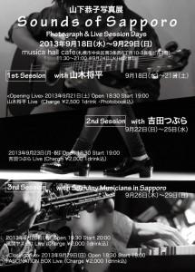 flyer_2013_1